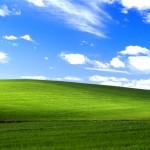 Istoria celei mai reprezentative fotografii din Windows XP