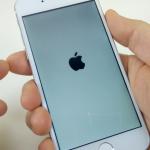 """Apple va integra """"portofelul electronic"""" la noul iPhone"""