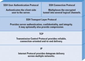 organizarea-protocolului-ssh