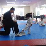Râzi cu lacrimi! Vezi cum se trece testul de inițiere la Taekwondo