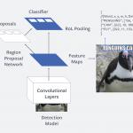 Facebook dezvolta un sistem artificial capabil sa detecteze MEME-urile vulgare